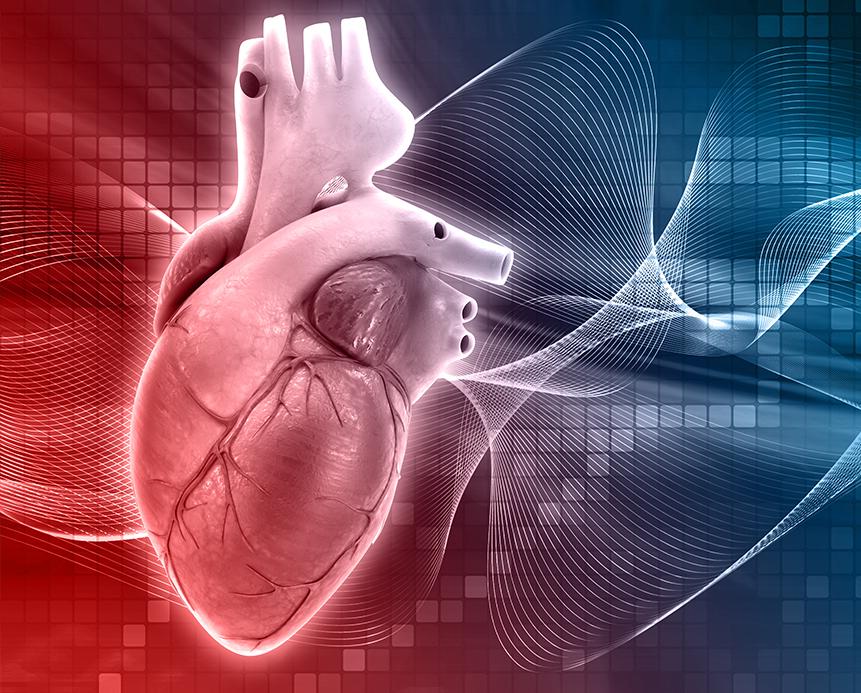 v-wellness_Electrocardiogram