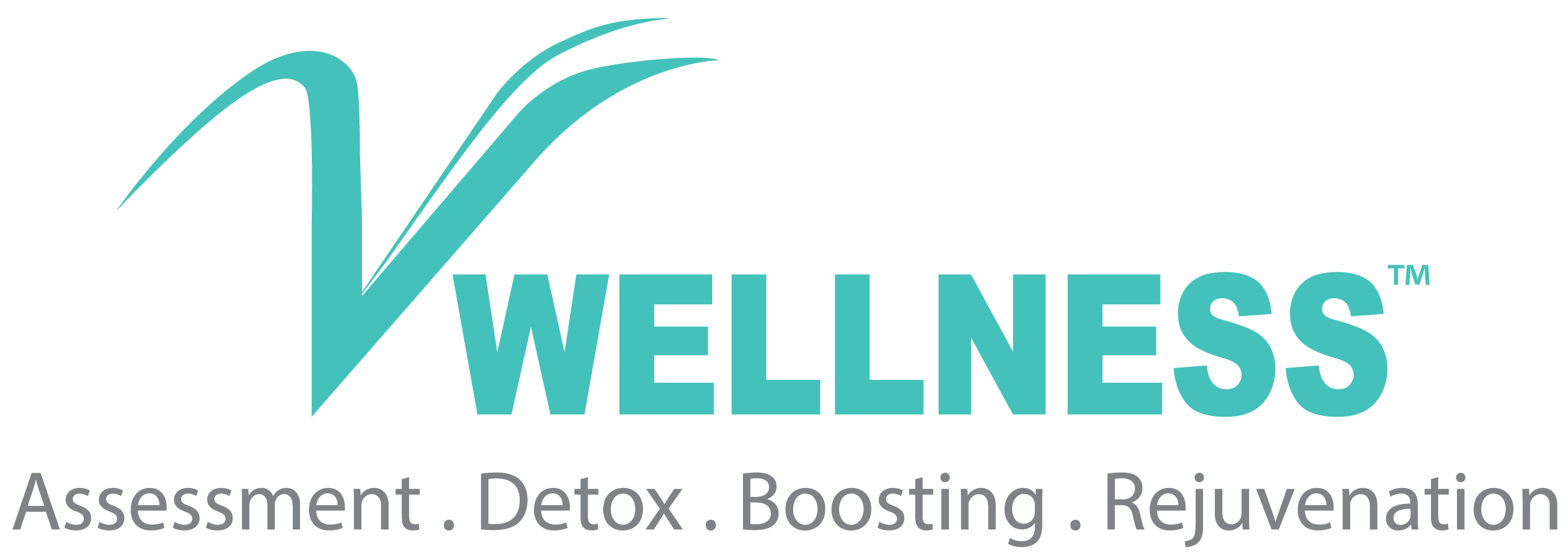 V Wellness Logo (Web)