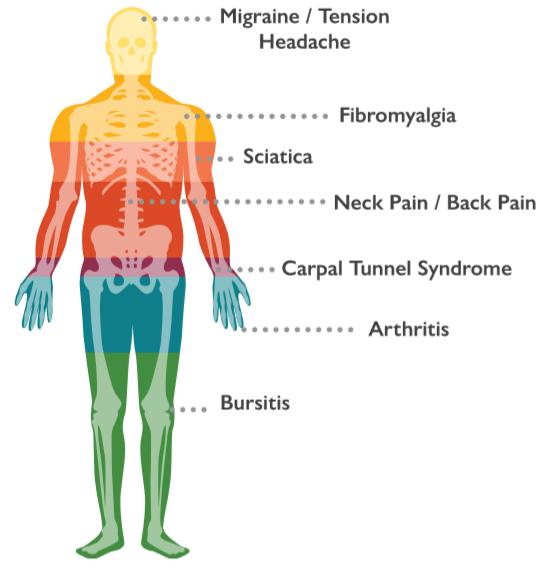 chiropractor1